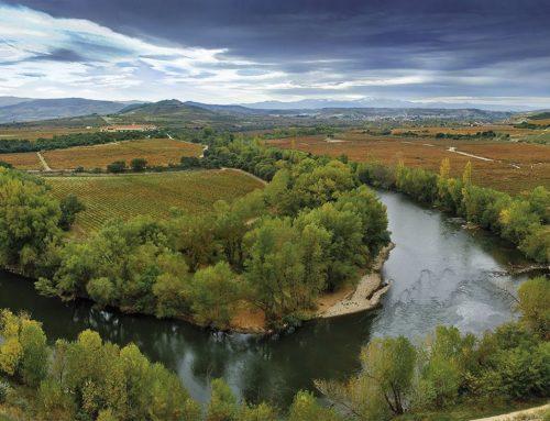 Vive un otoño inolvidable en Rioja Alavesa