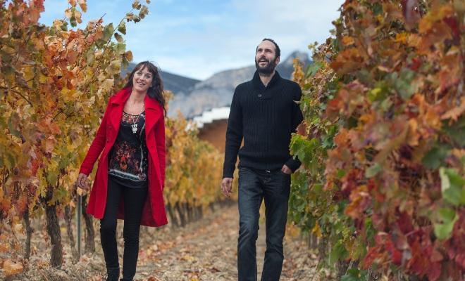 Paseo entre viñedos por Rioja Alavesa