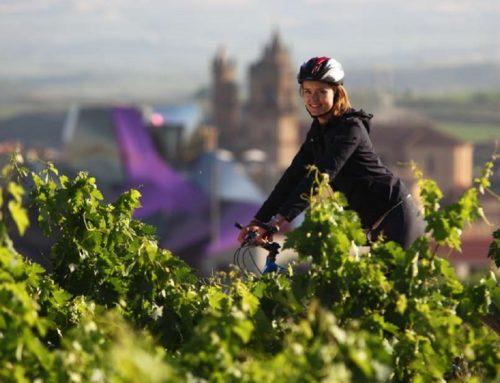 Pedaleando por Rioja Alavesa