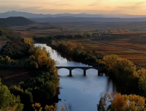 Descubre la magia del Ebro a su paso por Rioja Alavesa