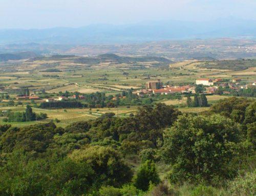 Un día en Rioja Alavesa, un recuerdo de por vida
