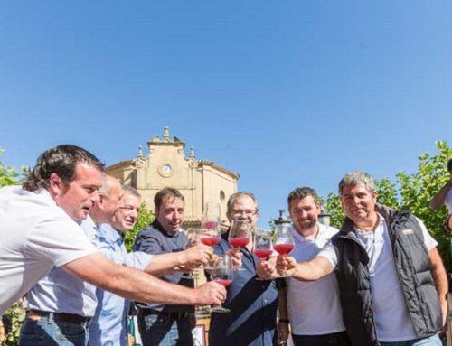 Un músico entre vinos de Rioja Alavesa