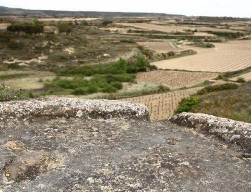 Las prensas más antiguas de Rioja Alavesa